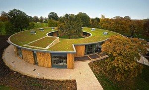 British Horse Society Green Roof