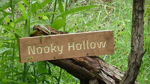 Nooky Hollow PS